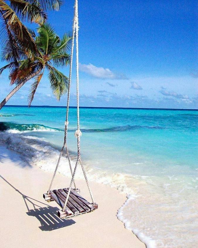 beachswing